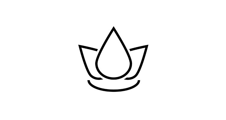 spa-icon-2